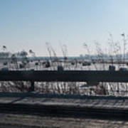 Fields Of Snow Art Print