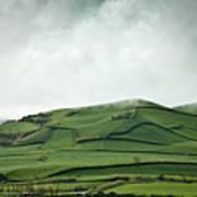 Fields Of The Hill Art Print