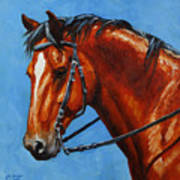 Fiery Red Bay Horse Print by Crista Forest