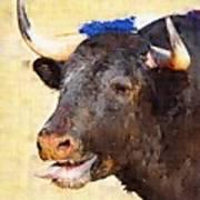 Fighting Bull Art Print