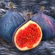 Figs 3 Art Print