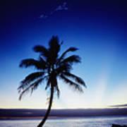 Fiji Sunset Art Print