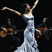 Finale Del Funcionamiento Del Flamenco Art Print