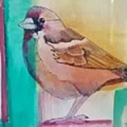 Finch Fun Art Print