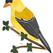 Finch In 2009 Art Print