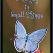 Find Joy In Small Things Art Print