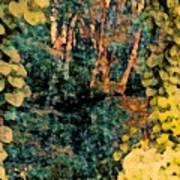 Finding Enchantment Art Print