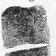 Fingerprints Of Vincenzo Peruggia, Mona Art Print