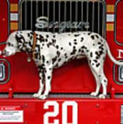 Fire Dog Art Print by Bryan Hochman