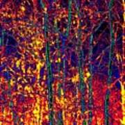 Fire In The Trees Art Print
