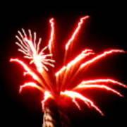 Firework Hibiscus Art Print