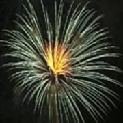 Fireworks Green Flower  Art Print