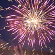 Fireworks In The Park 2 Art Print
