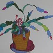 First Bloom Christmas Cactus Art Print