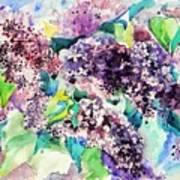First Lilac. Art Print