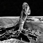 First Men On The Moon Art Print