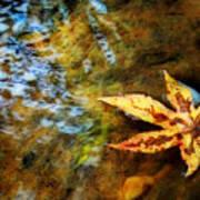 First Sign Of Fall Print by Sari Sauls