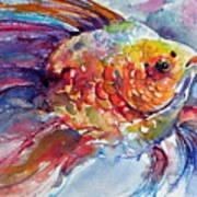 Fish II Art Print