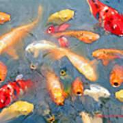 Fish In A Lake Art Print