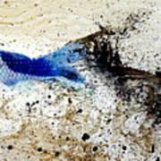 Fish In Rapids Art Print