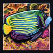 Fish Number 2 Art Print