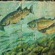 Fish On The Wall 2 Art Print
