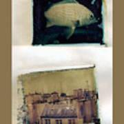 Fish Over Paris Art Print