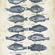 Fish Species Historiae Naturalis 08 - 1657 - 13 Art Print