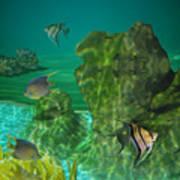 Fish Tank Art Print