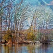 Fisherman On Burke Lake Art Print