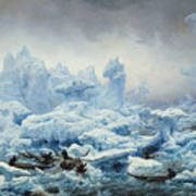 Fishing For Walrus In The Arctic Ocean Art Print