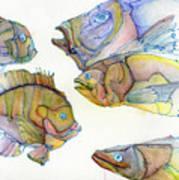 Five Fading Fish Art Print