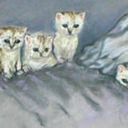 Five Kitties Art Print