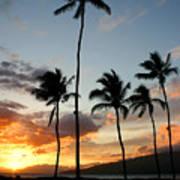 Five Palms Maui Hawaii Art Print