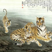 Five Tigers Art Print