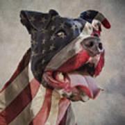 Flag Dog Art Print