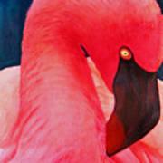 Flamboyant Flamingo Art Print