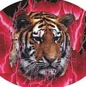 Flame Tiger Art Print