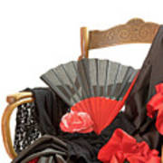 Flamenco Clothing  Art Print