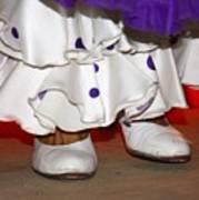Flamenco Steps Art Print