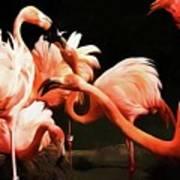 Flamingo Kisses Art Print