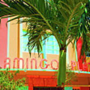 Flamingo Plaza Art Print