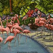 Flamingos Vintage Postcard Art Print