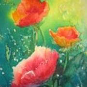 Flander's Poppies Art Print