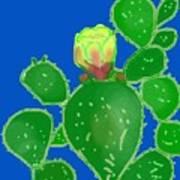 Flap Jack Cactus Art Print