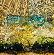 Flash Of Emerald Art Print