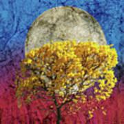 Flavo Luna In Ligno Art Print