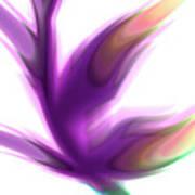 Fleur De Lumiere 02 Art Print