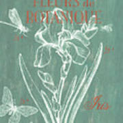 Fleurs De Botanique Art Print