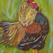 Flirty Hen Art Print
